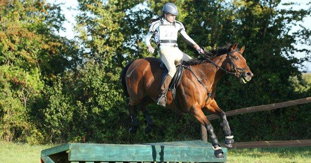 horse-and-rider.jpg